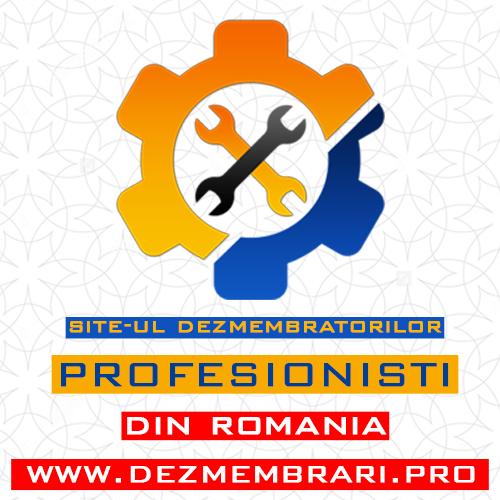 Site-ul dezmembratorilor profesionisti din Romania